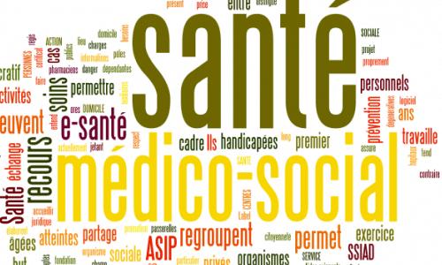 SECTEUR MEDICO-SOCIAL